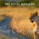 The Royal Madikwe